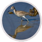 Willet Searching For Food In An Oyster Bed Round Beach Towel