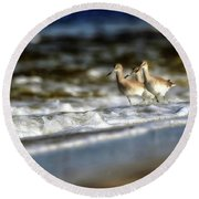 Willets In The Waves Round Beach Towel