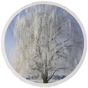 Willow In Ice Round Beach Towel