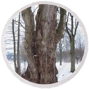 Willow Over Pond Round Beach Towel