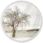 Willow Tree In Winter Round Beach Towel