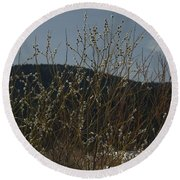 Willows In Snow Round Beach Towel