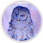 Wind Blown Owl  Round Beach Towel