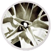Windmill Extreme Round Beach Towel