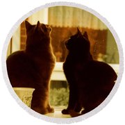 Window Cats Round Beach Towel