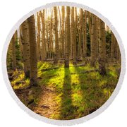 Windsor Trail At Dusk - Santa Fe National Forest New Mexico Round Beach Towel