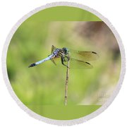Windswept Dragonfly Round Beach Towel