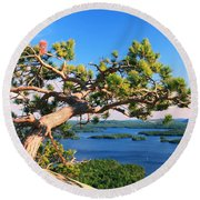 Windswept Pine On Rattlesnake Mountain Round Beach Towel
