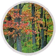 Windy Day Autumn Colors Round Beach Towel