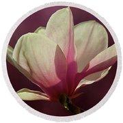 Wine And Cream Magnolia Blossom Round Beach Towel