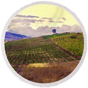 Wine Vineyard In Sicily Round Beach Towel