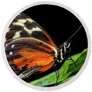 Wing Texture Of Eueides Isabella Longwing Butterfly On A Leaf Ag Round Beach Towel