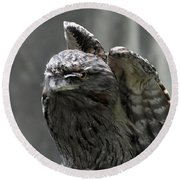 Wings Above A Tawny Frogmouth That Looks Interesting Round Beach Towel