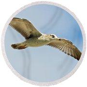Wings Aloft Round Beach Towel