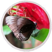 Wings Of Brown - Butterfly Round Beach Towel