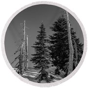 Winter Alpine Trees, Mount Rainier National Park, Washington, 2016 Round Beach Towel