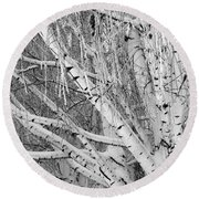 Icy Winter Birch Tree  Round Beach Towel