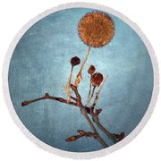 Winter Branch Round Beach Towel
