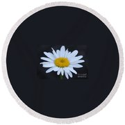 Winter Daisy Round Beach Towel