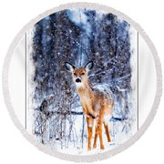 Winter Deer 1 Round Beach Towel