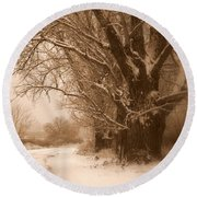Winter Dream Round Beach Towel by Carol Groenen