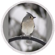 Winter Gray - Bird Round Beach Towel