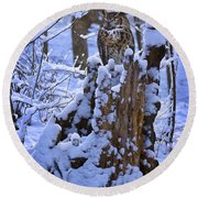 Winter Guest Round Beach Towel