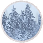 Winter In Maine 2017 Round Beach Towel