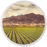 Winter Lettuce Round Beach Towel