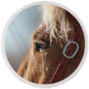 Winter Mustang Eye Round Beach Towel