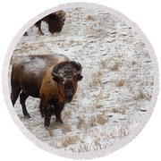 Winter Pasture Round Beach Towel