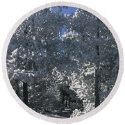 Winter Pathway Round Beach Towel
