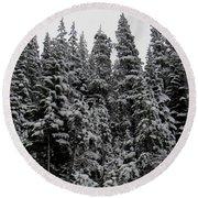 Winter Pine Spires Round Beach Towel