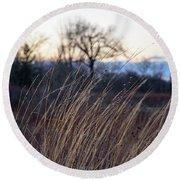 Winter Prairie Grass At Dusk Round Beach Towel