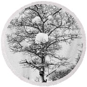 Winter Solace Round Beach Towel