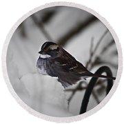 Winter Sparrow Round Beach Towel