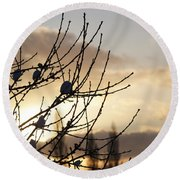 Winter Sun 3 Round Beach Towel