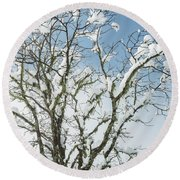 Winter Tree At Berry Summit Round Beach Towel