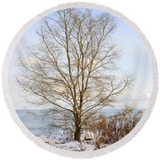 Winter Tree On Shore Round Beach Towel