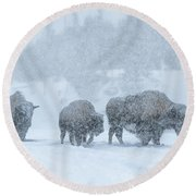 Winter's Burden Round Beach Towel by Sandra Bronstein