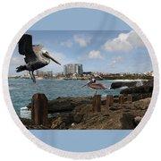 Wip- Pelican 00 Round Beach Towel