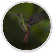 With A Rufous Tail... Round Beach Towel