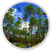 Withlacoochee State Forest Nature Collage Round Beach Towel