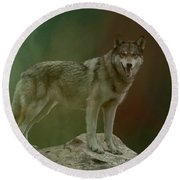 Wolf 0n Look-out Round Beach Towel