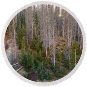 Wolf Creek Pass Forest Landscape Round Beach Towel