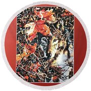 Wolf Hiding In Branches Round Beach Towel