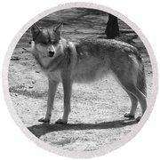Wolf Pride Round Beach Towel