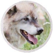 Wolf Smile Round Beach Towel