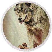 Wolf Wonder Round Beach Towel