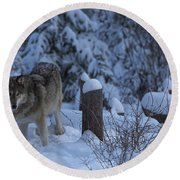 Wolf Wonderland Round Beach Towel